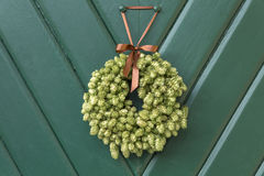 Holiday wreath made out of hop vines Stock Image