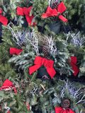 Holiday Wreaths with red Bow Royalty Free Stock Photos