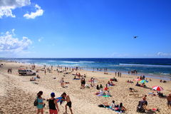 Sunbathing at Gold Coast beach Royalty Free Stock Photos