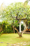 Holidays in Asia, Bali villas Stock Photography