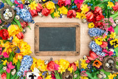 Holidays background with chalkboard. Spring flowers and easter e Stock Photos
