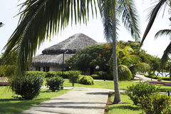 Holidays in a Caribbean beach. royalty free stock photo