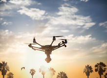 Holidays with a copter: a drone with a camera flying on a beautiful sunset sky with palm trees on the background. stock images