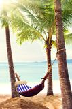 Empty hammock between palm trees Stock Images