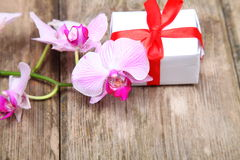 Holidays gift and orchid Royalty Free Stock Photos