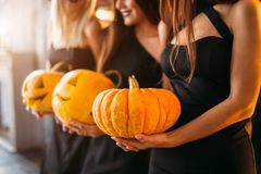 Close up of woman with pumpkins at home royalty free stock photo