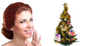 Holidays Tree.Merry Christmas Stock Photo