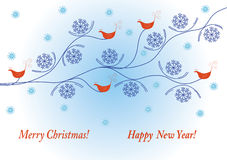 Holidays winter card with birds Stock Photos