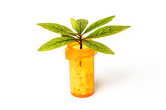 Holistic Medicine. Leaf on a pill bottle as alternative medicine concept Royalty Free Stock Photography