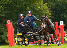 Holker Hall National Carriage Driving Trials 2010 Royalty Free Stock Images
