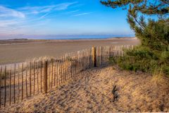 From the Pine Woods to the Sea. Holkham beach is one of the best unspoilt beaches in Norfolk and the Holkham Estate one of the largest national nature reserves royalty free stock photos