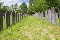 Holländare-judisk kyrkogård: huvudsaklig del i den Diemen kyrkogården Royaltyfria Foton
