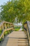 Holländare landskap - Lutjegast - Groningen royaltyfri foto