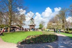 Holländare trädgårds- Keukenhof nära Amsterdam, Nederländerna royaltyfri foto