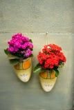 Holländerklotz-Blumentöpfe im Garten Stockbilder