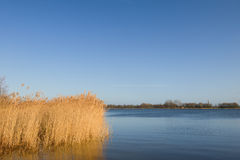Holländische Landschaft Lizenzfreies Stockfoto