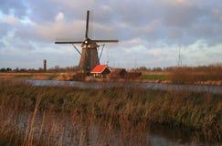 Holländische Landschaft Stockfoto