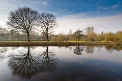 Holländische Landschaft im Winter Lizenzfreie Stockbilder
