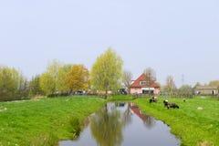 Holländische Landschaft mit Bauernhofhaus Lizenzfreie Stockfotografie