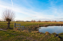 Holländische Landschaft mit einem reflektierenden Teich Lizenzfreie Stockfotos