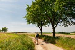 Holländische Landschaft mit gehendem Mann Stockfoto
