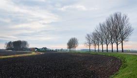 Holländische landwirtschaftliche Landschaft im Winter Stockfoto