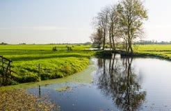 Holländische Polderlandschaft im Herbst Lizenzfreies Stockbild