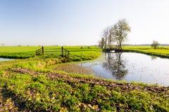 Holländische Polderlandschaft im Herbst Lizenzfreie Stockfotos