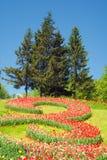 Holländische Tulpen zeigen in Kiew 2012 Stockbilder