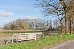 Holländische Weide mit Bauernhaus und Zaun Stockfotos