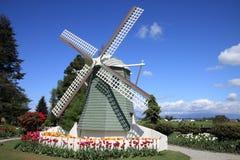 Holländische Windmühle und Tulpen im Frühjahr Lizenzfreies Stockbild