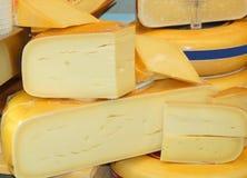 Holländischer Käse Stockfoto