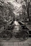Holländisches bycicle auf einem brigde Stockbild