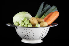 Holländisches Winter-Gemüse lizenzfreie stockfotos