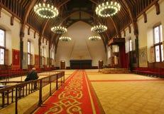holländsk drottninglokalbiskopsstol Royaltyfria Foton