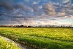 Holländsk jordbruksmark i guld- för solnedgångljus arkivbild