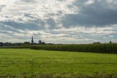 Holländsk jordbruksmark, landskap med det gamla kyrkliga tornet och havrefält Royaltyfri Fotografi