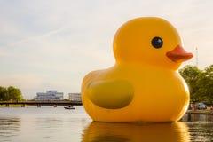 Holländsk konstnärFlorentijn Hofman ` s Rubber Duck Sculpture i Norfolk, VA fotografering för bildbyråer