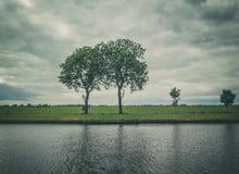 holländsk liggande Arkivfoto