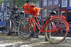 holländsk orange för cykel Arkivfoton