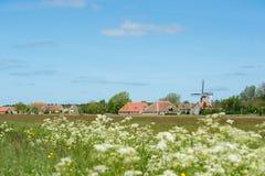 Holländsk by på Terschelling Arkivfoto