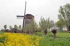 Holländsk väderkvarn 'De Zwaan', Arkivfoton