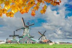 Holländsk wind mal Royaltyfria Bilder