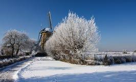 Holländsk winterlandscape med väderkvarnen Royaltyfri Fotografi