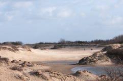 holländska dyner Arkivbilder