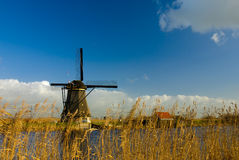 holländska windmills Fotografering för Bildbyråer