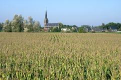 Holländskt landskap med kyrkan, cornfielden och byn Royaltyfria Bilder
