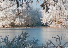 Holländskt snölandskap med den djupfrysta sjön och änder Royaltyfri Bild