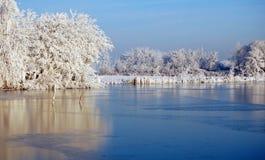 Holländskt snölandskap med den djupfrysta sjön och träd Royaltyfria Foton