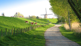 Holland Stockfoto
